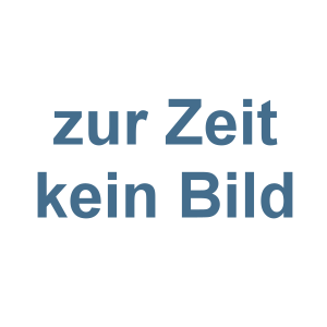 Alu-Baseballschläger Schöne Grüsse aus Ostdeutschland